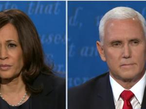 2020美国大选-副总统