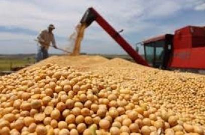 全球食品涨价1年! 经历10年来最高 无降温